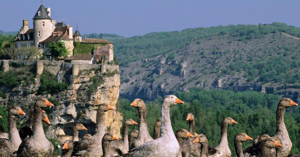 BGE Formations Dordogne