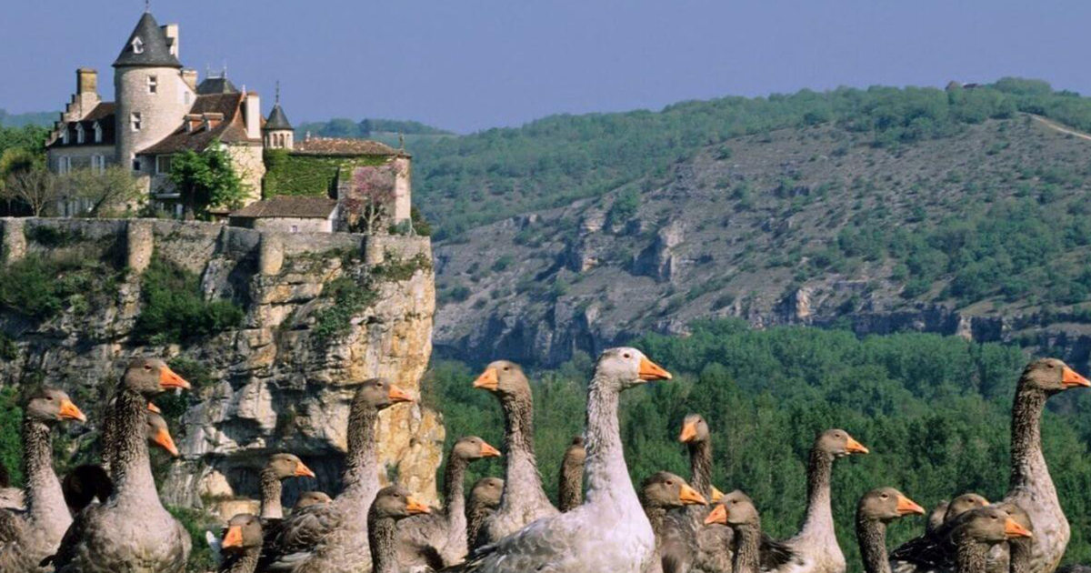 Departement 24 Dordogne BGE formation Perigord